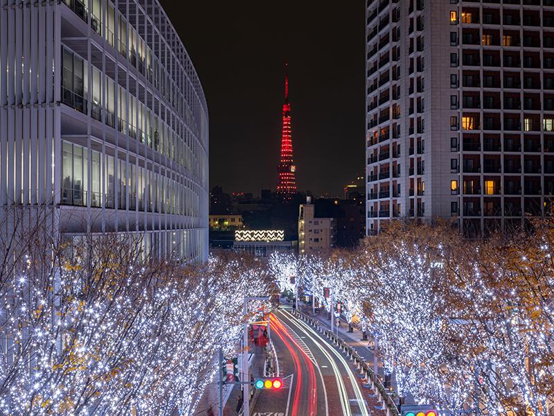 Tokyo-light-festival-show-street