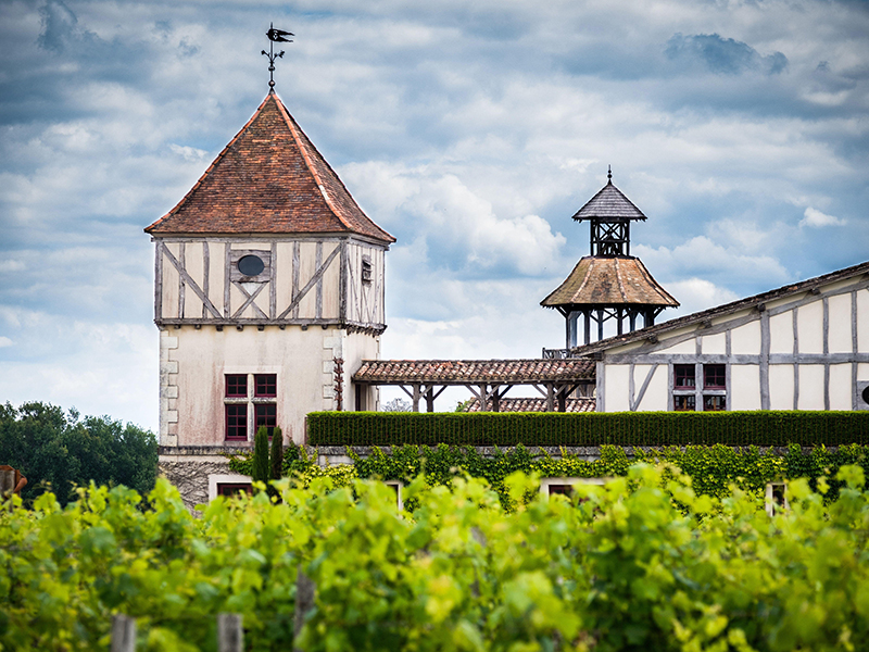 The winery and vines at Château Smith Haut Lafitte