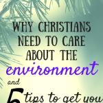Environmental awareness is important for Christians! 5 tips to get you started.