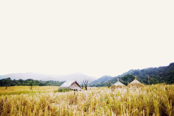 Stepped out of the jungle to thise beautiful view of the rice fields and China in the distance.