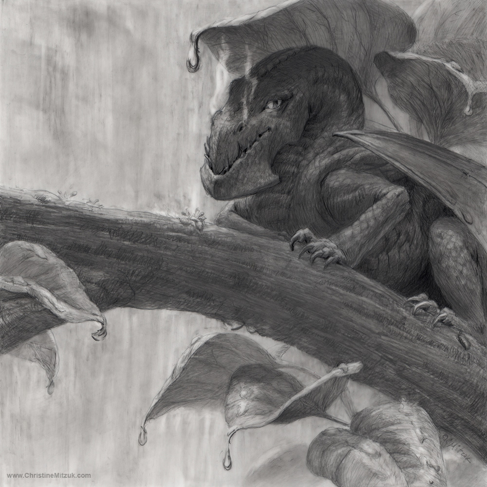 Pencil drawing of a tiny dragon on a branch hiding under leaves in the rain