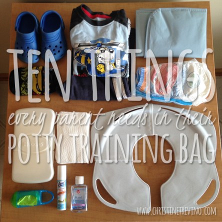 Ten things Every Parent should have in their potty training bag