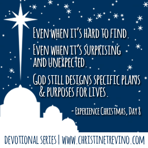 By God's Design [Experience Christmas Quote]