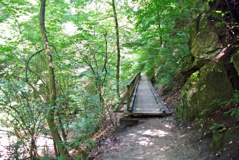 Hagenbachklamm St. Andrä-Wördern