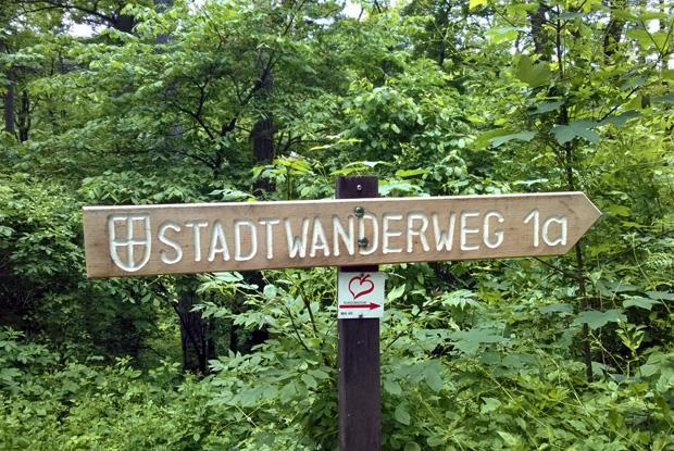 Stadtwanderweg 1a auf den Leopoldsberg