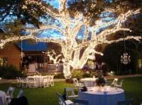 5 Popular Types of Outdoor Wedding Reception Lighting ...