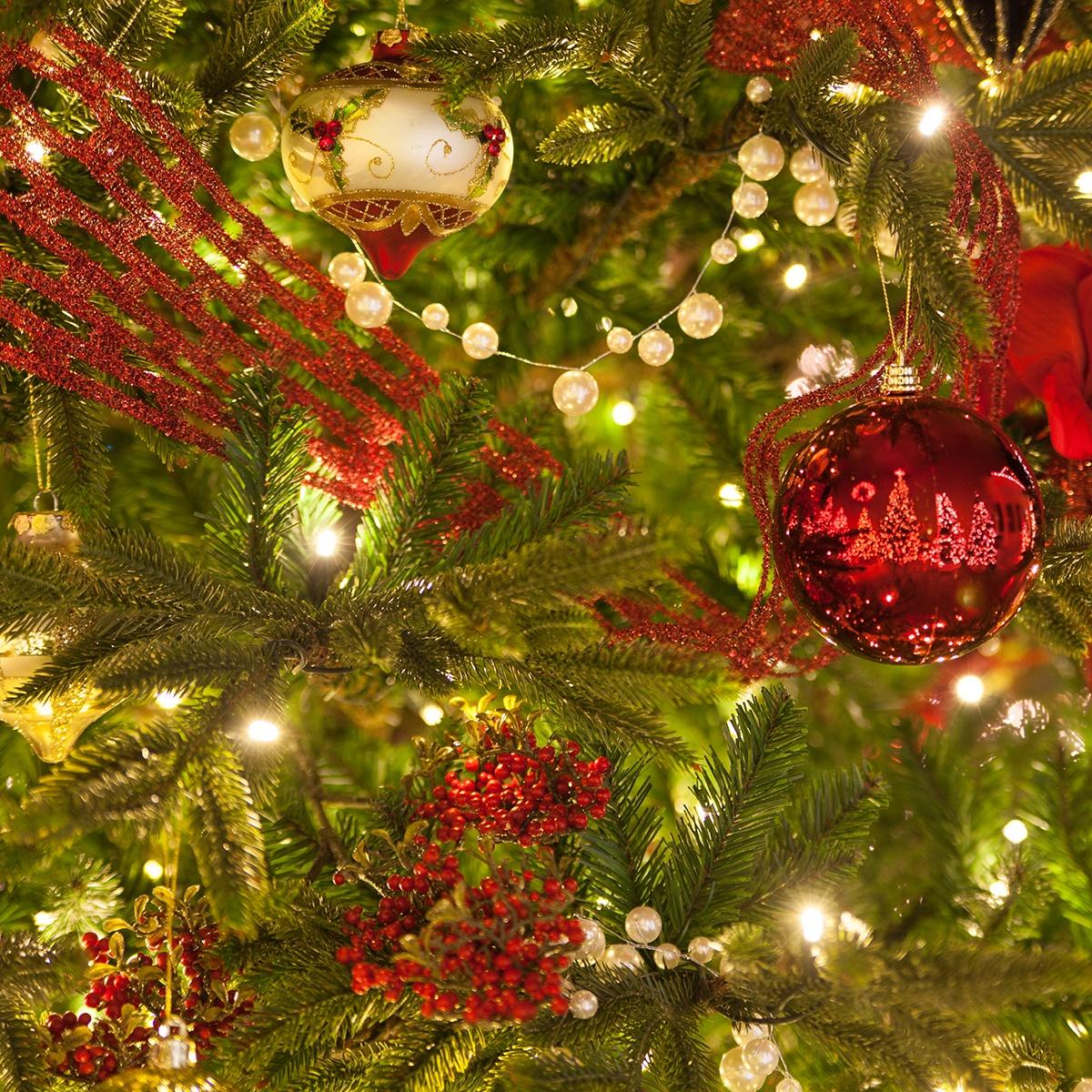 Christmas Lights Icicle