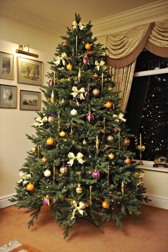 Live Wallpaper Money Falling Artificial Vs Real Christmas Trees What Is The Best