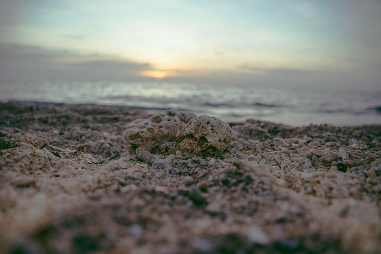 Day2: Rocky beach