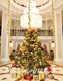 Favorite Hotel Christmas Tree In Beverly