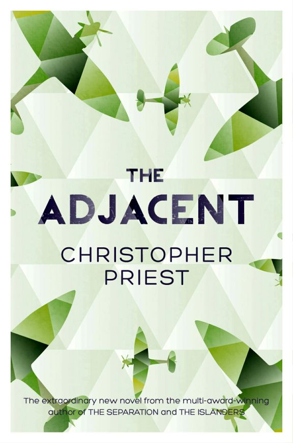 Cover image for The Adjacent