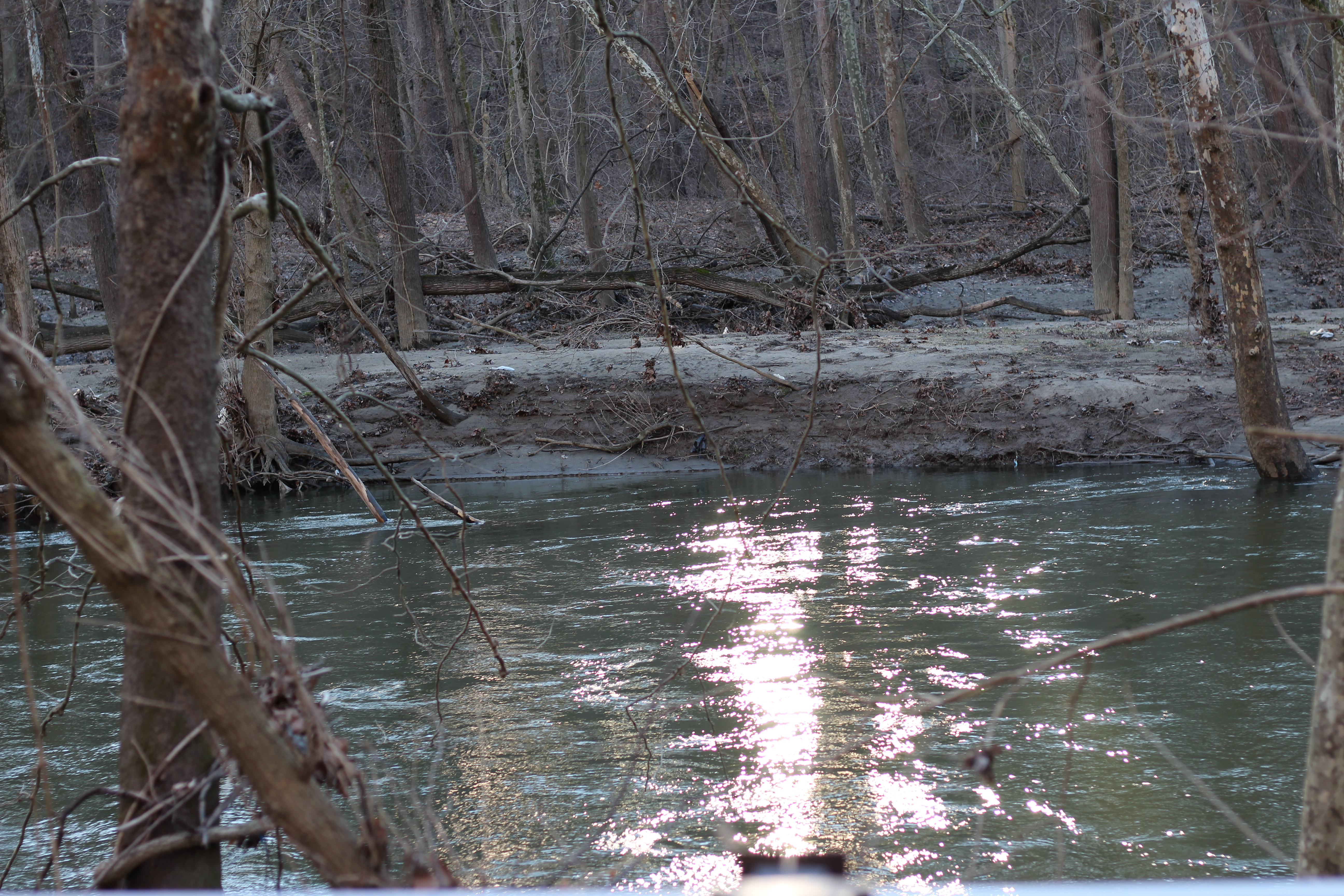 Light on the water, Patapsco Valley State Park Daniels Area, Ellicott City, Maryland