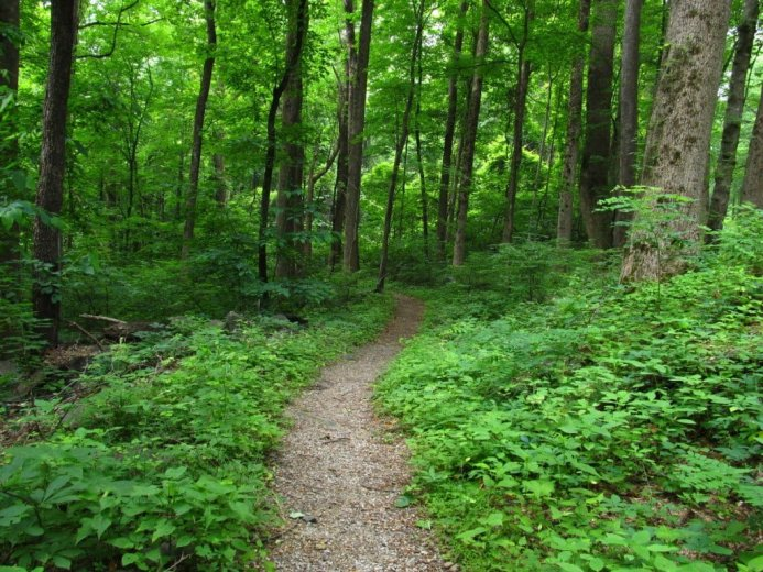 smoky mountain hiking trails romantic