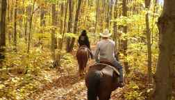 horseback riding fall things to do smoky mountains tennessee