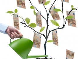 Does it take money to make money - tree.