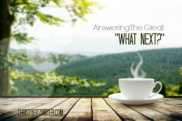 "Answering the Great ""What Next?"" -christyfitzwater.com"