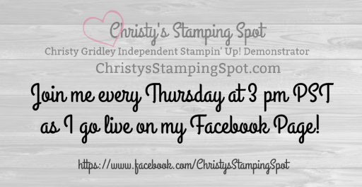 Quick link to Christy's Facebook Business Page