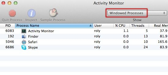Activity Monitor - Windowed Processes