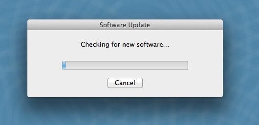 Software Update Check