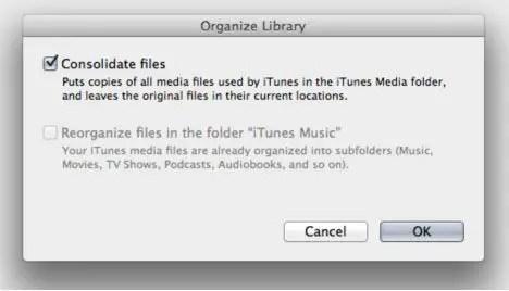 Organize Library iTunes