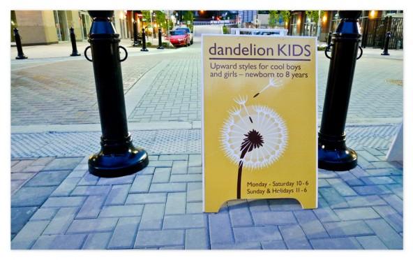 dandelion-pm-storefront05-hg