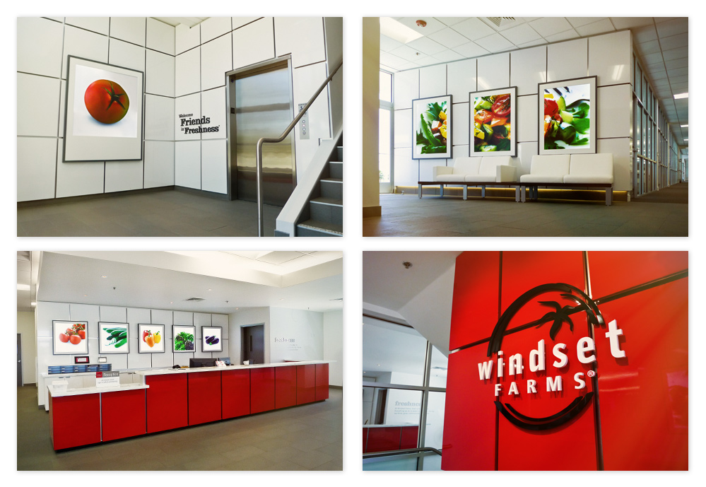 Overview of the work I did for Windset Farms office interior design treatments — see the link above to learn more about that project.