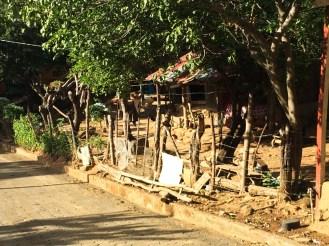 Nicaragua Honeymoon photos 007