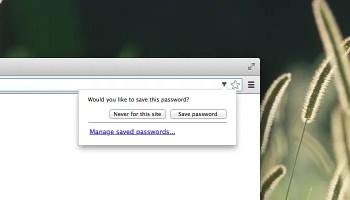 save-chrome-password
