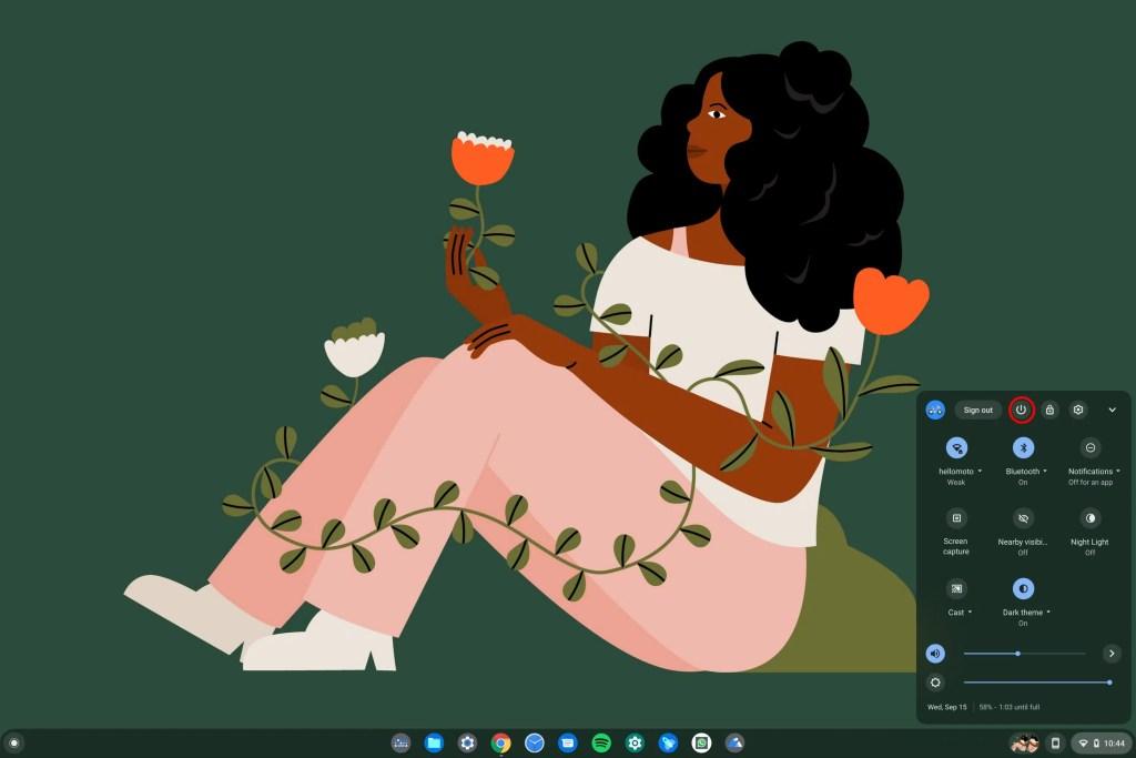 Chromebook Shuttodwn icon