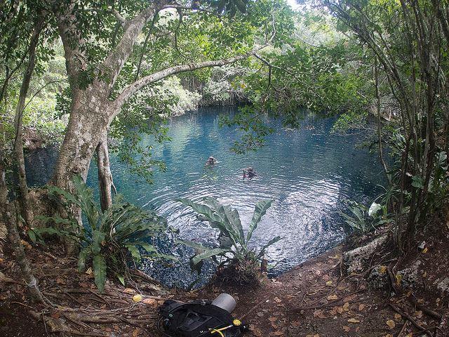 Cenote Angelita Playa del Carmen Mexico