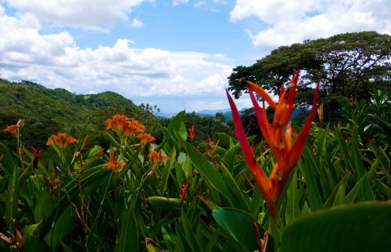 Finca in Matagalpa © Hanna Bizjak