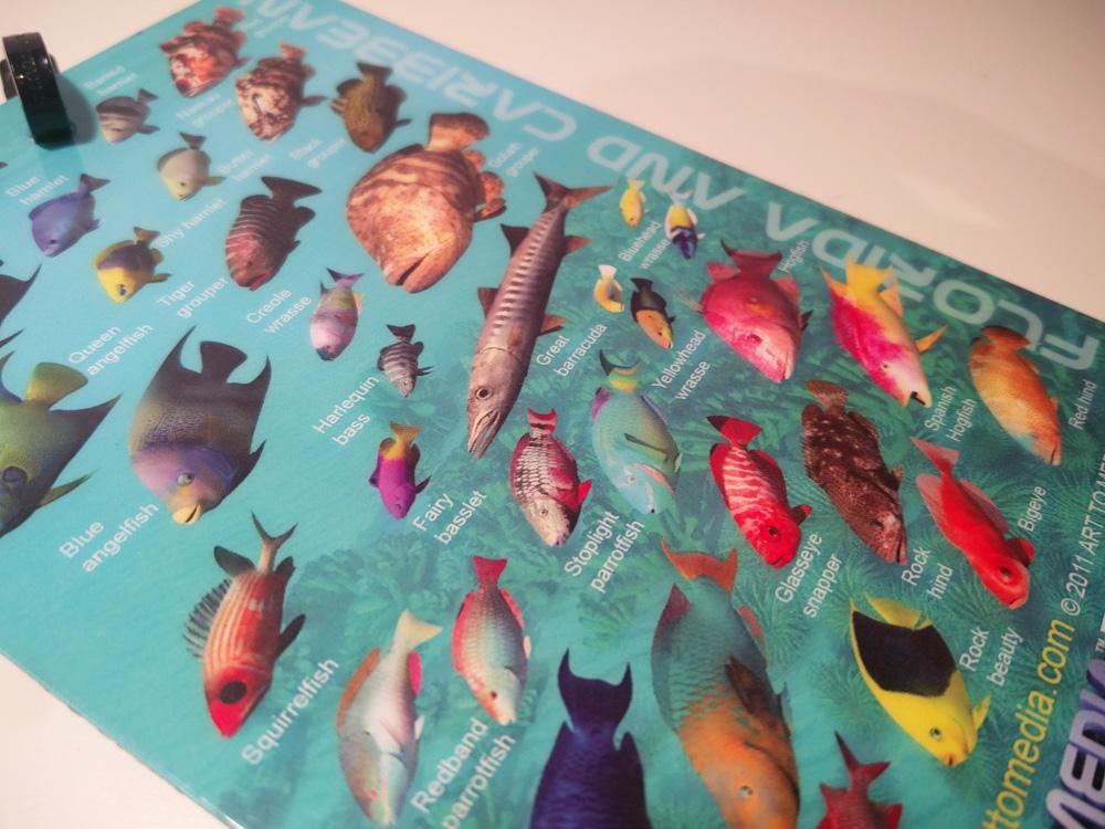 Geschenke Taucher Fish ID slate