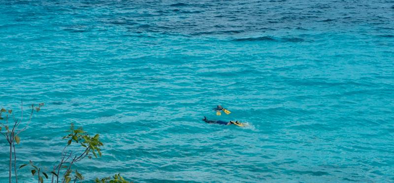 Bonaire schnorcheln