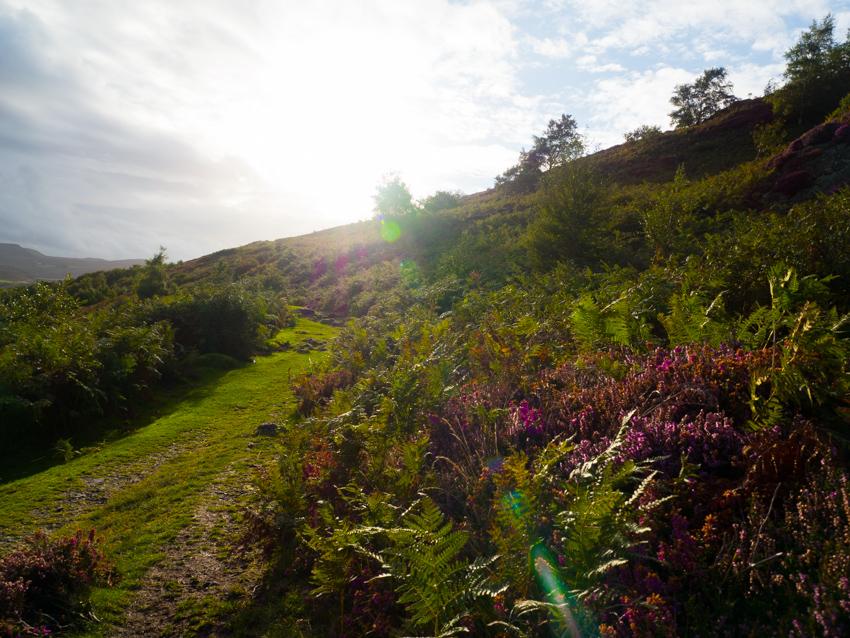 Wales im Herbst