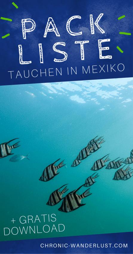 Packliste für Tauchurlaub in Mexiko pinterest