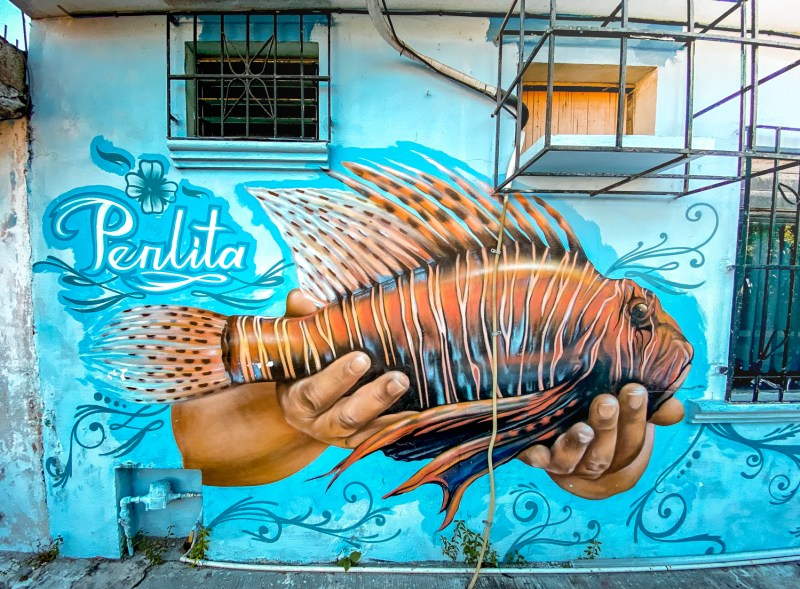 La Perlita Mural Cozumel