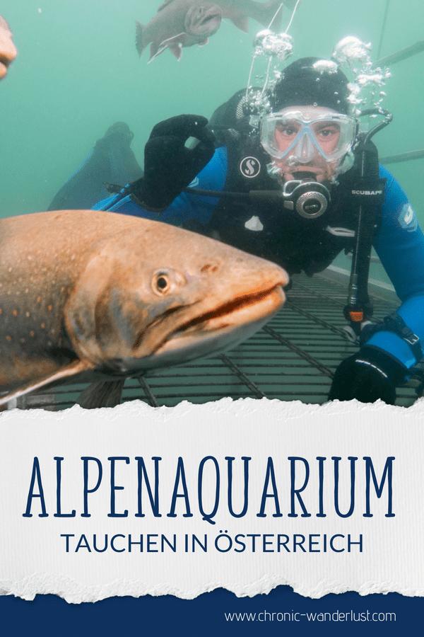 Alpenaquarium Grüblsee