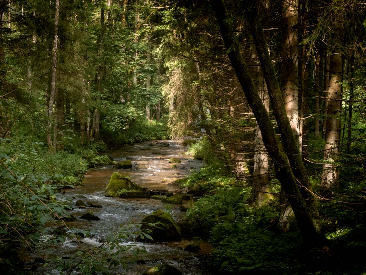 Thurytal Wanderung