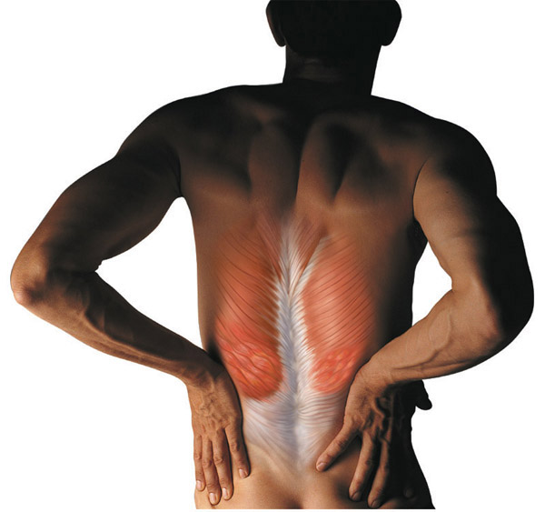Muscle Spasms: Back Muscle Spasms | | Chronic Body Pain