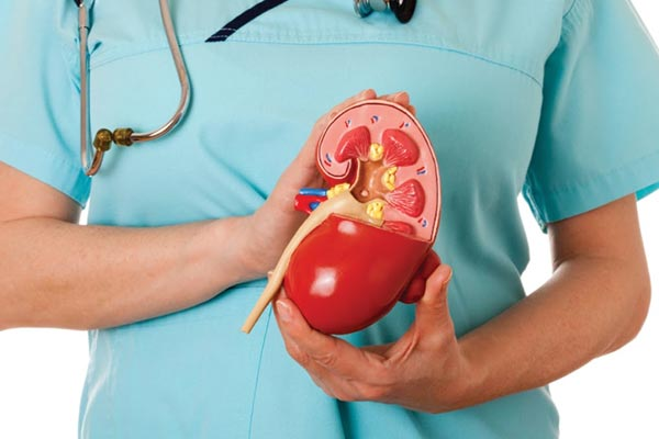 Best Natural Treatments for Kidney Failure