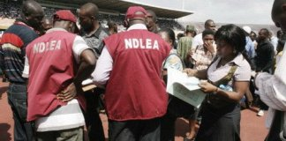 NDLEA officers at work