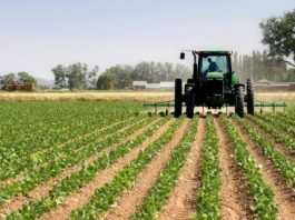 Italy says it is ready to invest in Nigeria agriculture