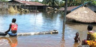 Flood destroyed over 3000 houses in Bauchi