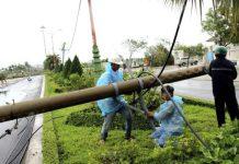 Typhoon Damrey hits Vietnam