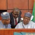 Senate President Bukola Saraki, his deputy Ike Ekweremadu and Speaker Yakubu Dogara are leaders of the 8th National Assembly