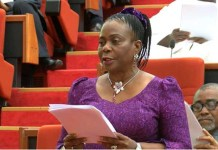 Senate Minority Leader, Biodun Olujimi of PDP has lost her reelection bid