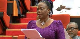 Senate Minority Leader, Biodun Olujimi of PDP has lost her reelection bid