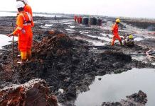 FONDEI frowns at politicians intrusion as HYPREP works on Ogoni Clean Up