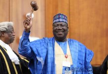 Senate President Ahmed Lawan appointed Olu Onemola as Speacial Assistant on New Media