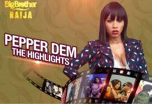 BBNaija PepperDem Highlights are available on DStv and GOtv